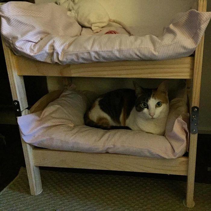 Деревянные кукольные кровати идеально подходят для котиков