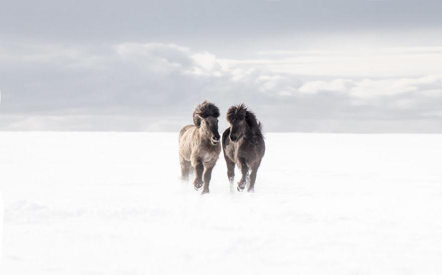Красота природы Исландии от фотографа из Швеции
