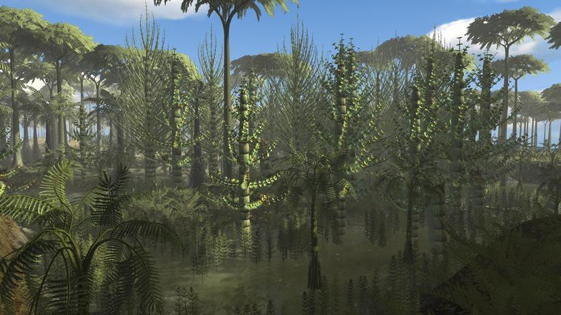 Как выглядели леса нашей планеты в период карбона