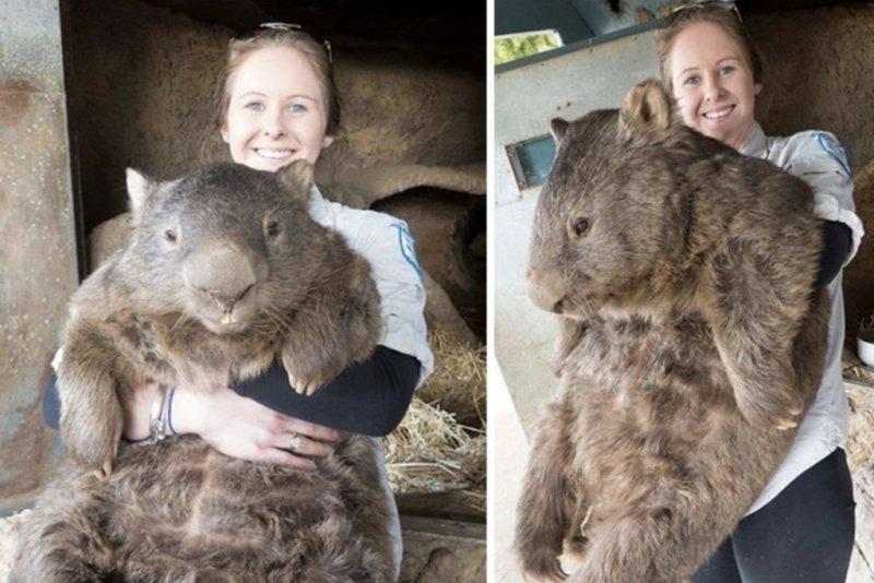 Эти снимки заставят задуматься об истинных размерах человека