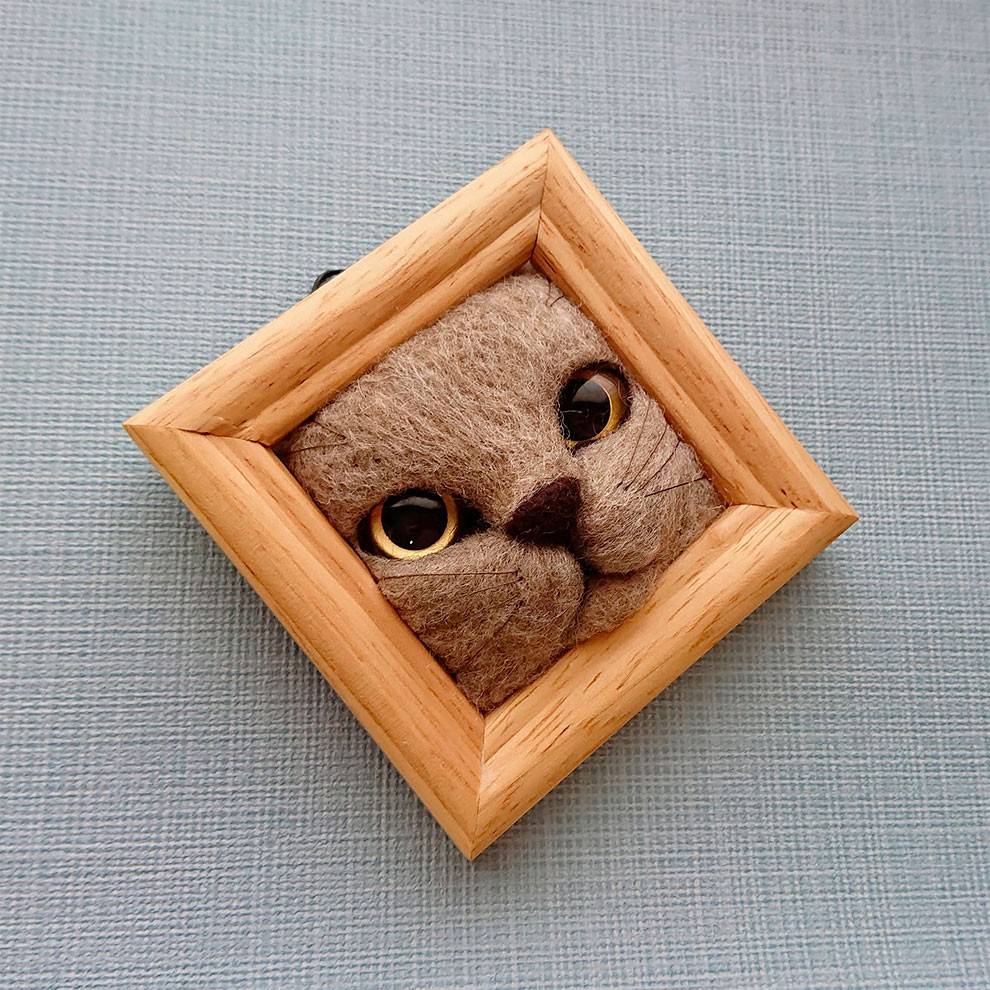 Кошачьи мордочки из шерсти, которые пытаются вылезти из рамки