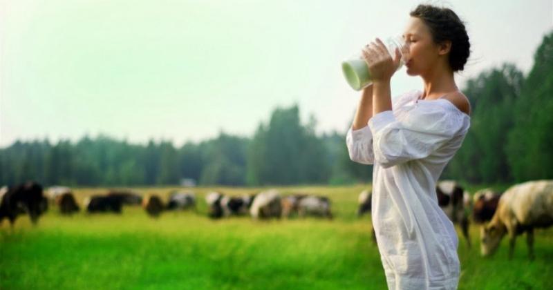 Какое количество молока можно употреблять без вреда для здоровья (ФОТО)