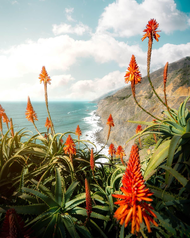 Красота природы на фотографиях  (ФОТО)