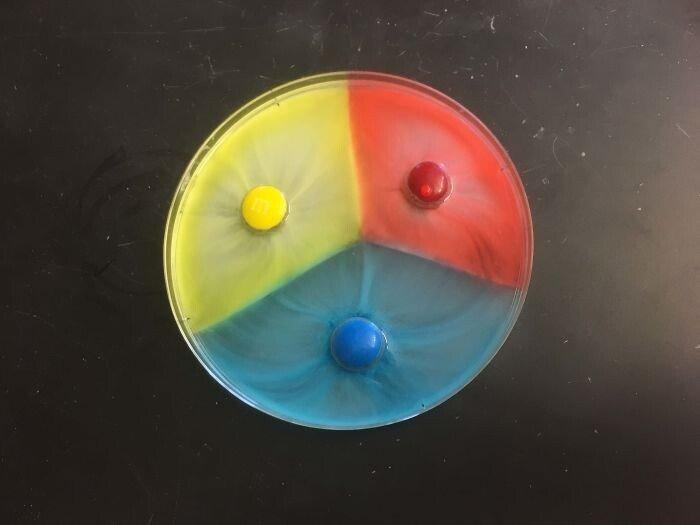 Безумные эксперименты с подручными средствами: а что будет, если...
