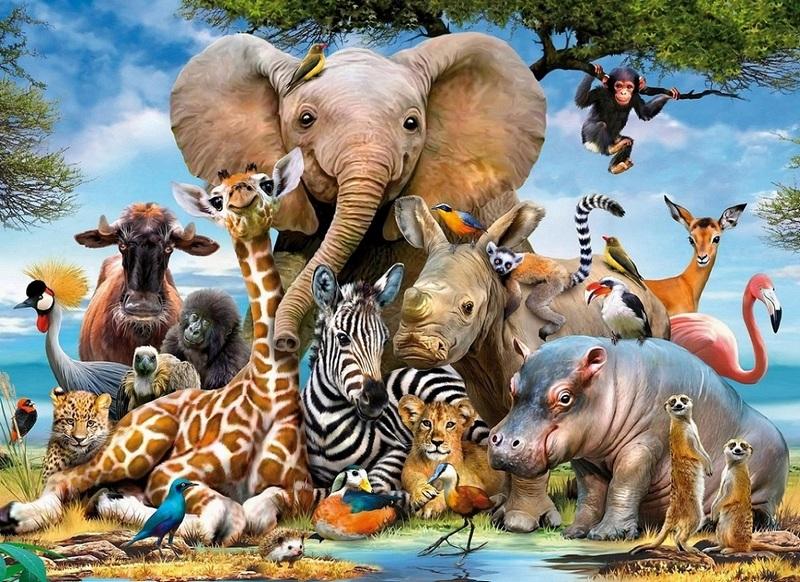 Интересные факты об уникальности некоторых животных