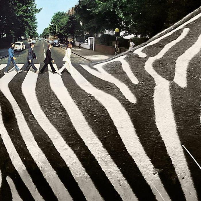Художник видит животных буквально повсюду
