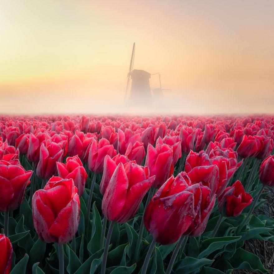 Самые красивые в мире пейзажи с фотоконкурса #Landscape2020 от Agora