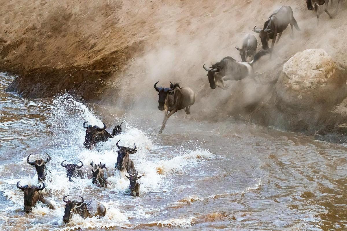 Чем Танзания может удивить путешественников