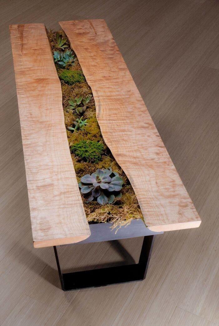 Суккуленты помогли превратить столы в пышные зеленые сады