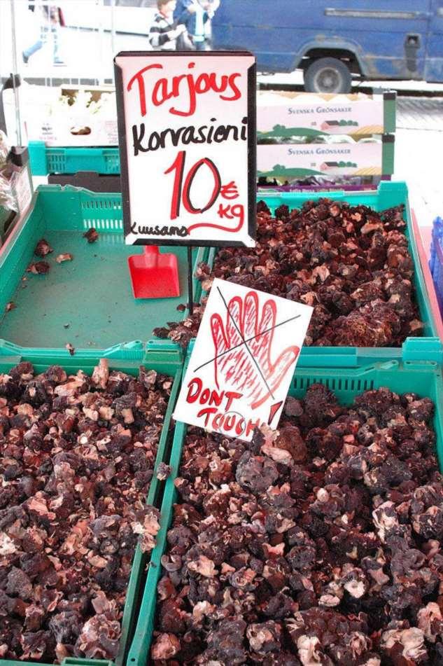 Смертельно опасные грибы, которые считаются деликатесом у финнов