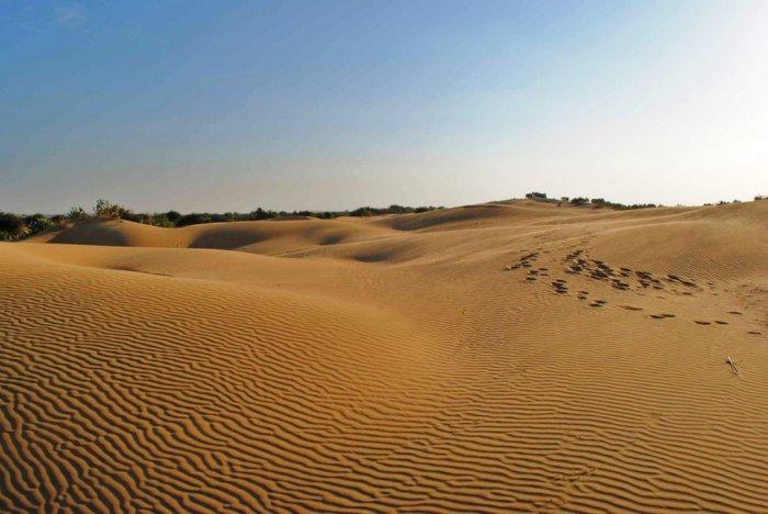 Пустыни в России и их особенности