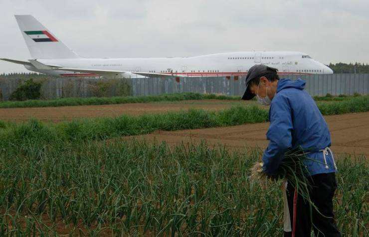 Японский фермер выращивает овощи посреди огромного аэропорта