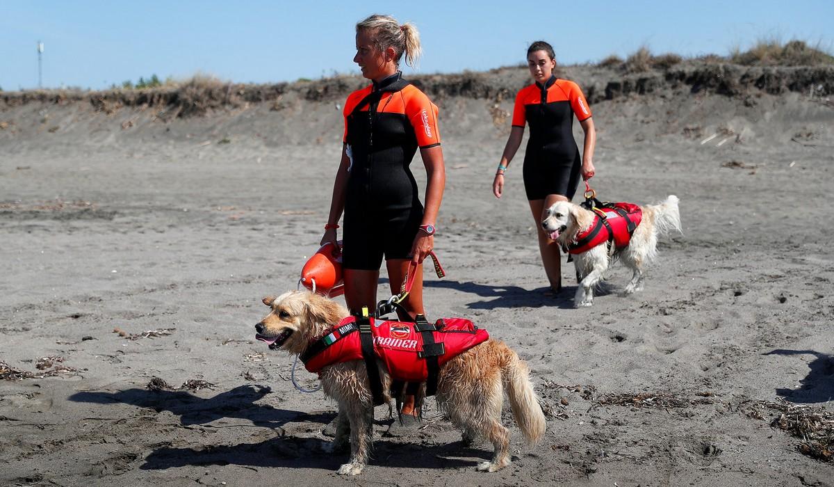 Школа кинологов и собак-спасателей в Италии