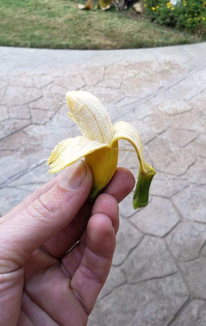 Люди делятся результатами своего щедрого урожая