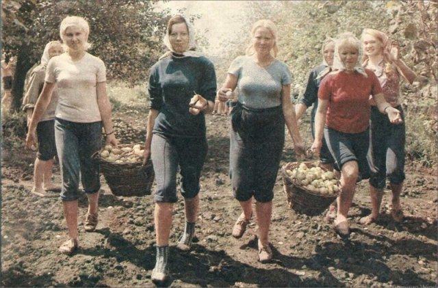 Атмосферные снимки осени в СССР