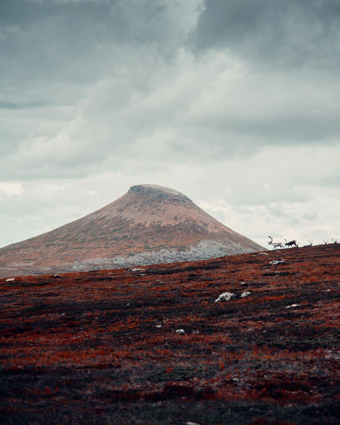 Природа и путешествия на снимках Маркуса Магнберга