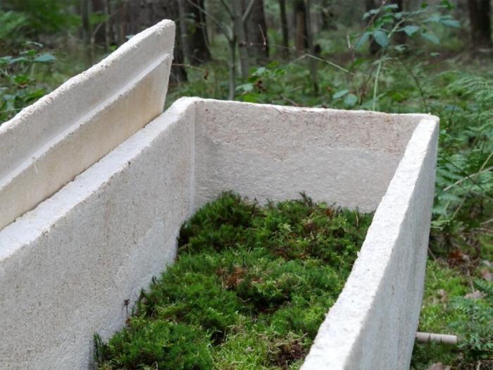Дизайнер из Голландии создал экологичный гроб
