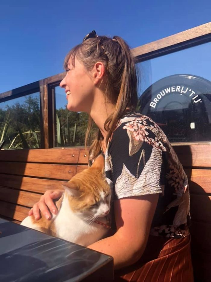 Люди встретили котиков в самых неожиданных местах