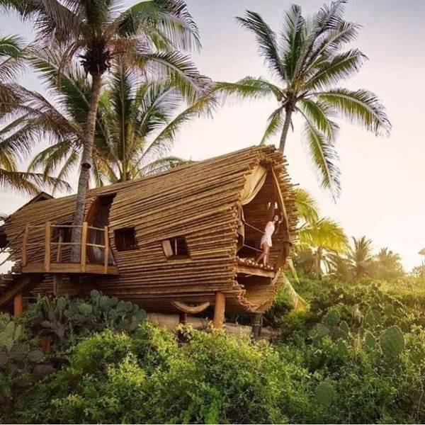 Разные домики на деревьях — мечта детства