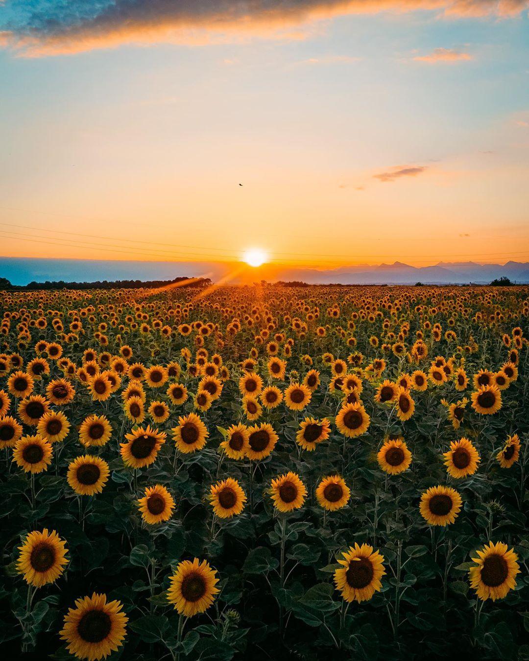 Великолепные снимки из путешествий Давиде Анзиманни