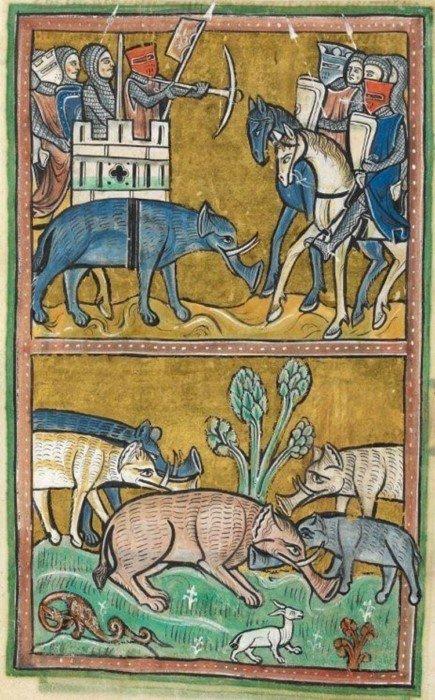 Забавные животные глазами средневековых художников