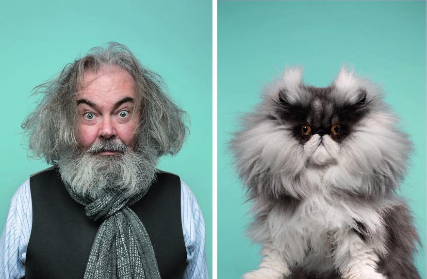 Невероятное сходство хозяев с их кошками
