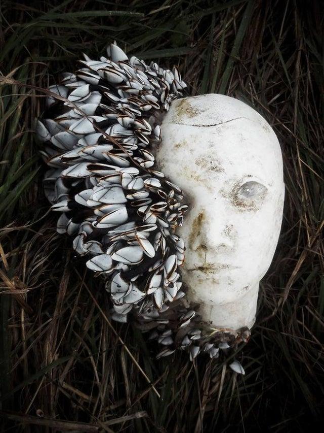 Примеры искусства, случайно созданного людьми и природой