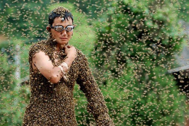 Китаец установил мировой рекорд, став местом отдыха для невероятного количества пчел