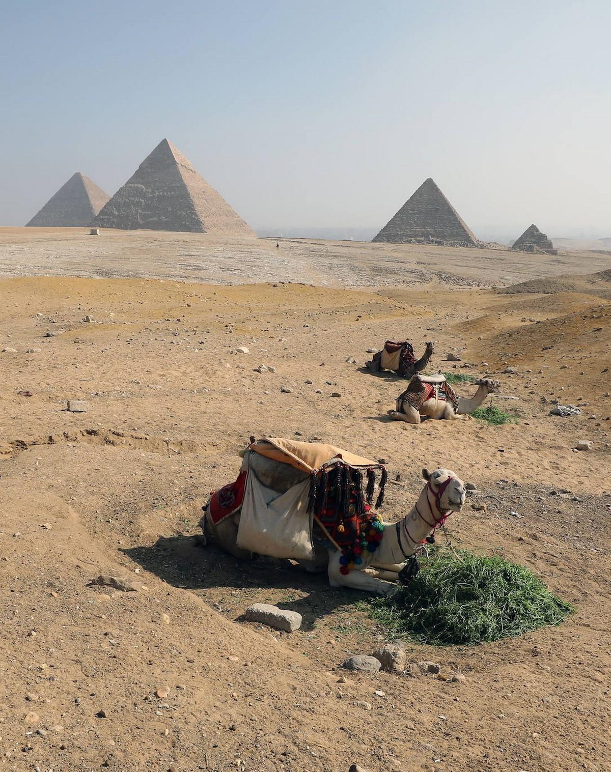 Фестиваль воздушных игр 2020 в Египте