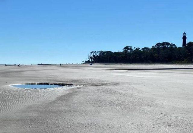 Пара на пляже нашла огромный зуб морского монстра из далекого прошлого