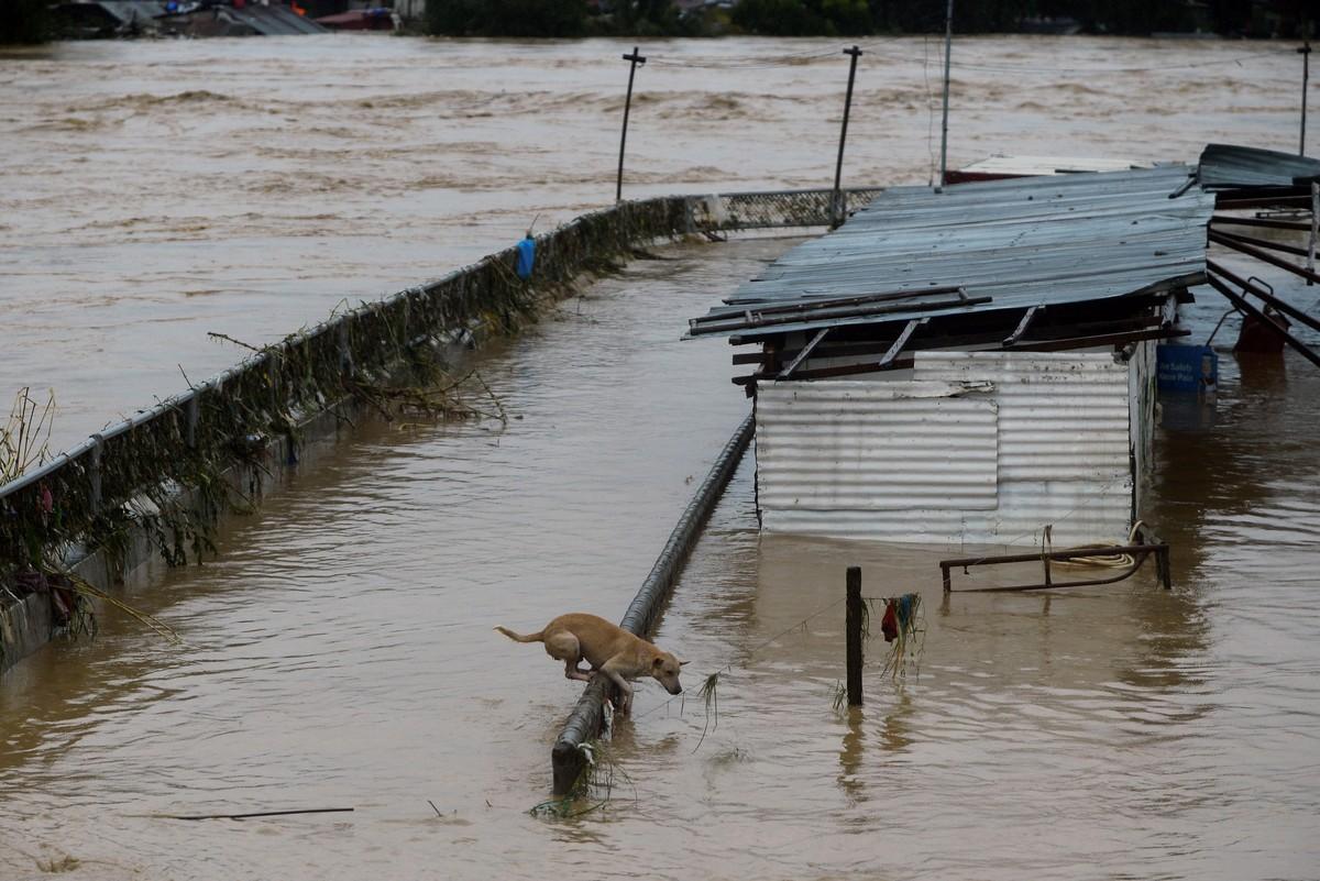 Последствия мощного тайфуна Vamco на Филиппинах