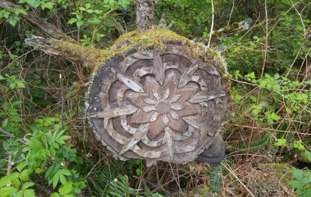 Странные и немного жуткие находки в лесу