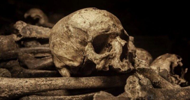 Малоизвестные факты о настоящих вампирах