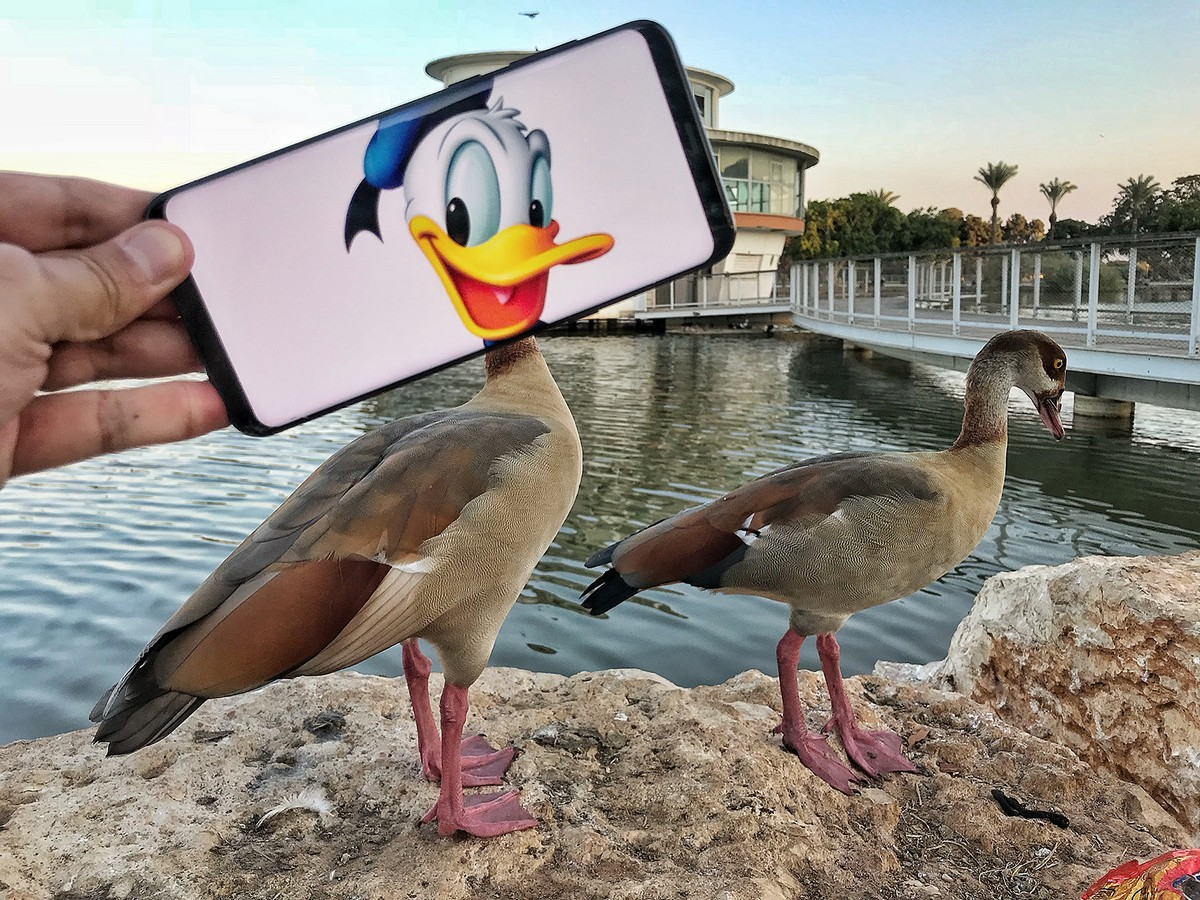 Сатирические фотографии со смартфоном от Яхава Драйзина