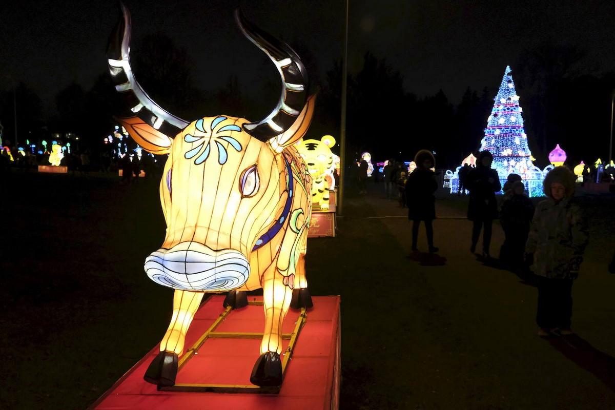 Фестиваль гигантских китайских фонарей в Таллине