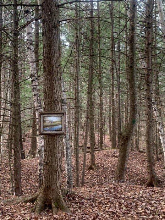 Пугающие и любопытные находки, сделанные в лесу