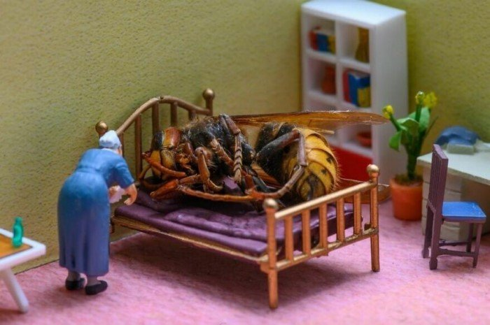 Венгерский художник создает миниатюрные миры