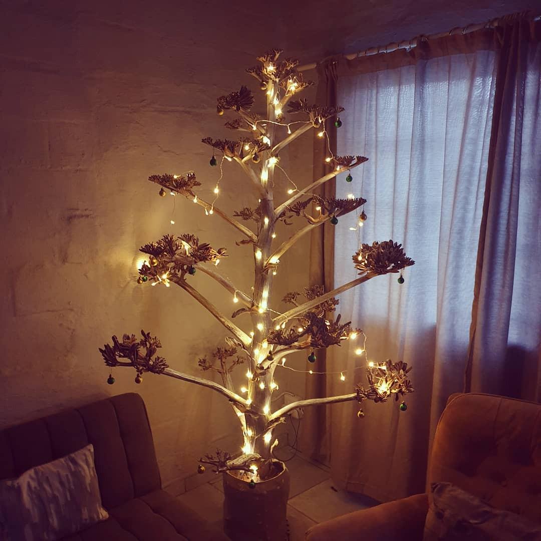 Необычные и креативные новогодние ёлки