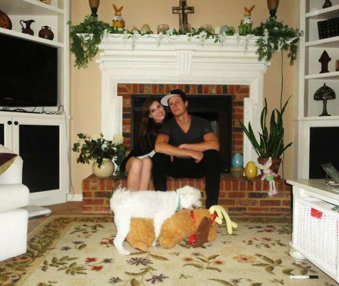 Собаки просто обожают фотобомбить рождественские снимки