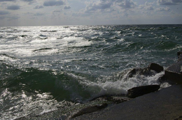 Кто обитает в Чёрном море на глубине 2000 метров?