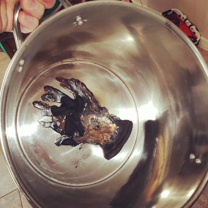 Почему некоторых просто нельзя пускать на кухню