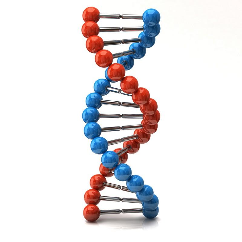 Самые интересные факты об атомах и молекулах