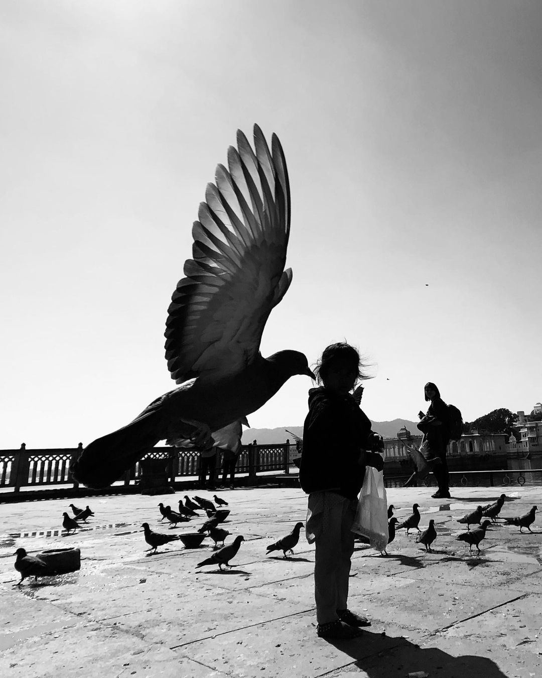 Замечательные уличные снимки от Димпи Бхалотия