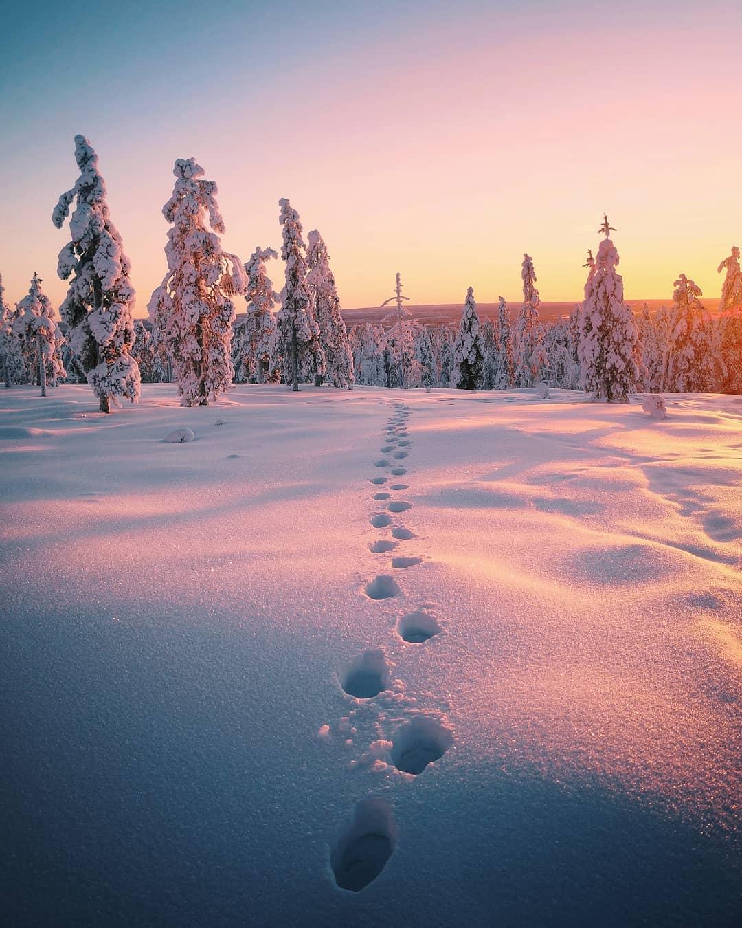 Пейзажи Финляндии и Исландии на снимках Эсси Траутвейн
