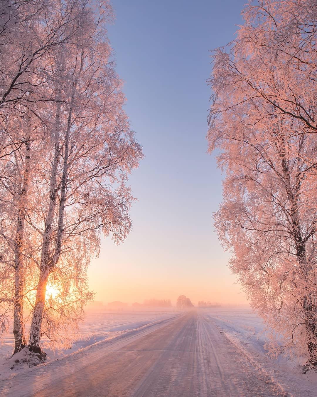 Зимняя природа Финляндии на снимках Юкка Рисикко