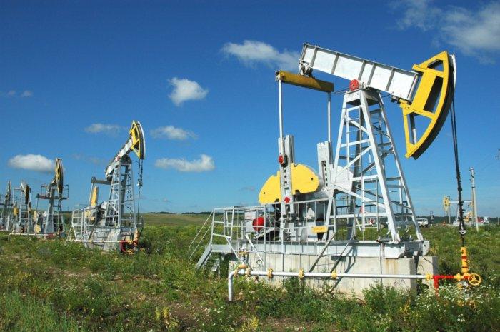 Откуда на нашей планете взялась нефть?