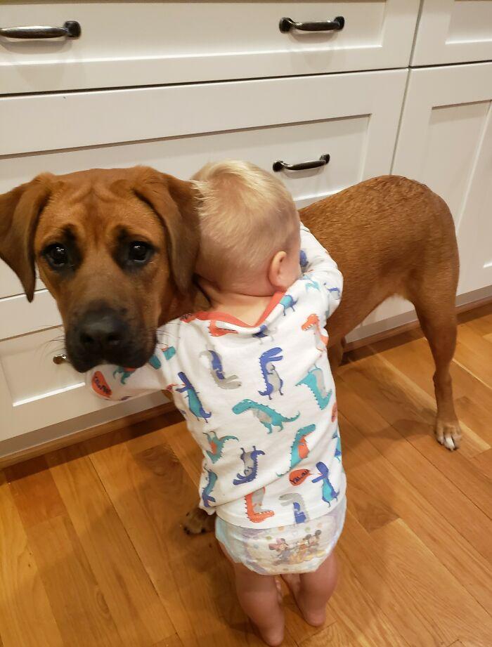 Вот почему дому, где растёт ребёнок, нужна собака
