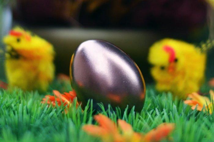 Так что же появилось раньше – курица или яйцо?