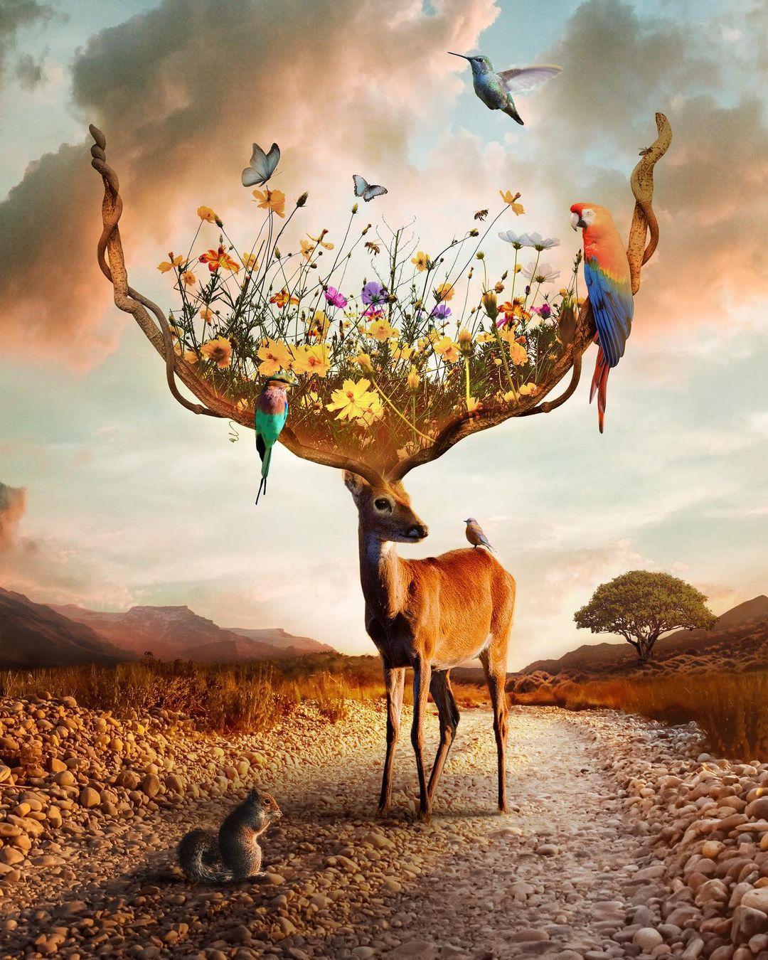 Сюрреалистические фотоманипуляции от Наташи Эйнат