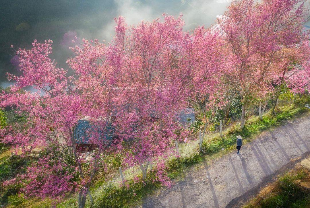 Красота Вьетнама на снимках с высоты от Пэма Хай Трунга